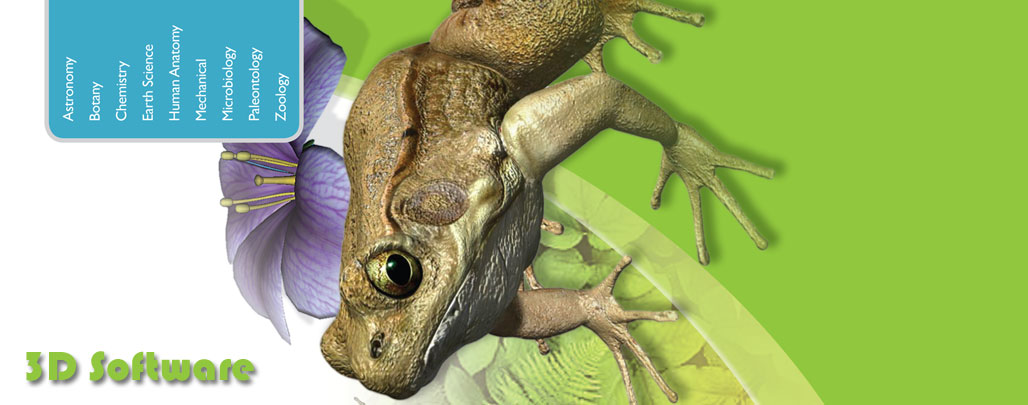 3D Software, 3D Science, 3D Biology, 3D Frog, 3d Human Body